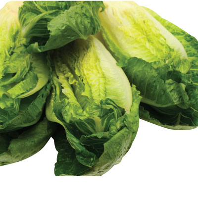 Iceberg, Romaine, Green Leaf or Red Lettuce 2/$3